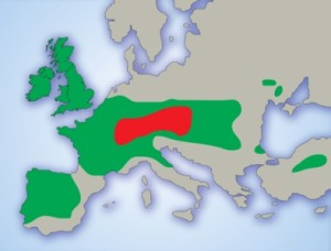 celticeuropemap
